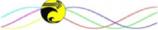 AmmEnDesign, LLC